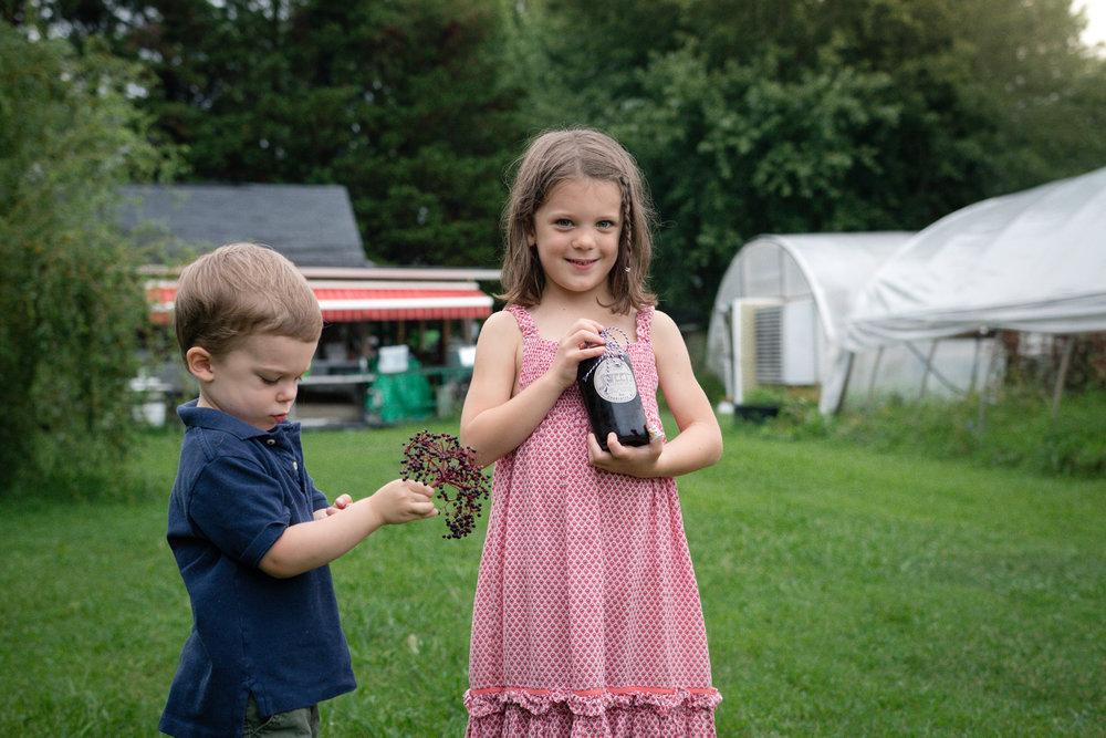 Elderberry Harvest-19.jpg