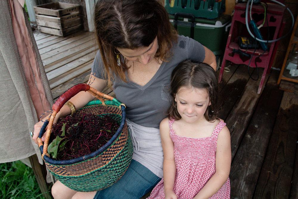 Elderberry Harvest-35.jpg