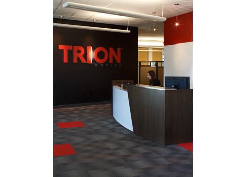 Trion-1-487x350.jpg