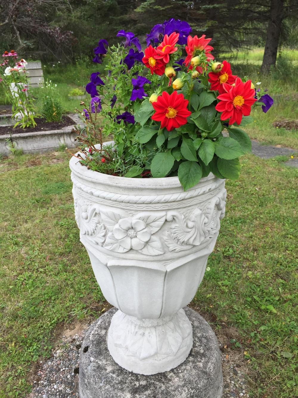 Decorative Floral $95