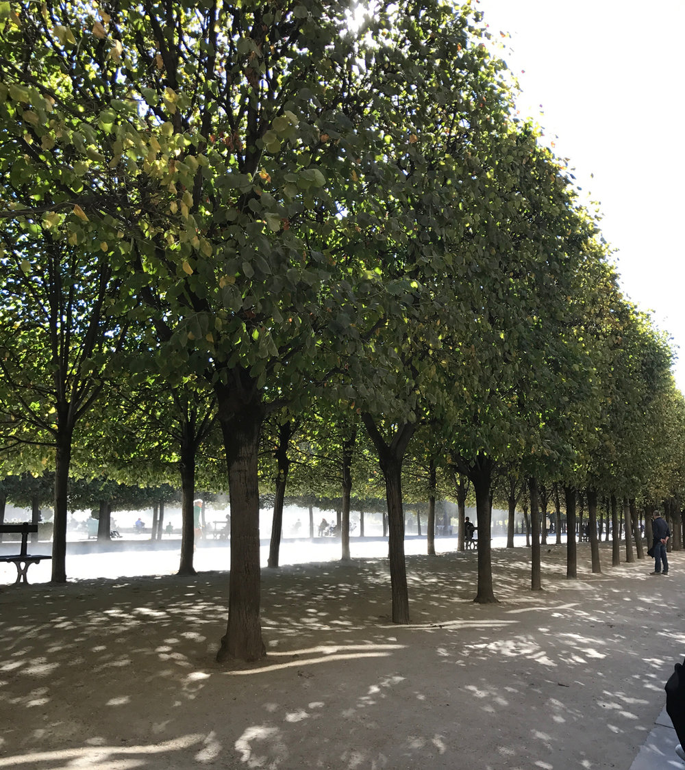 Our Cafe Kitsune view of Le Palais Royal.