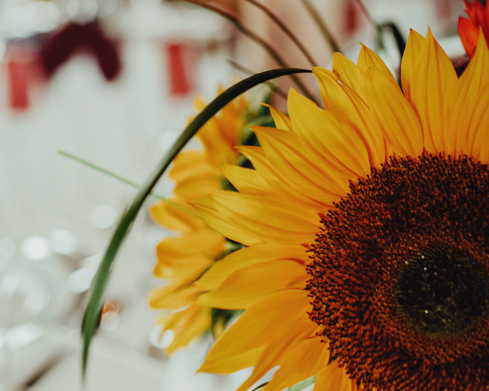 sunflower wedding centrepieces