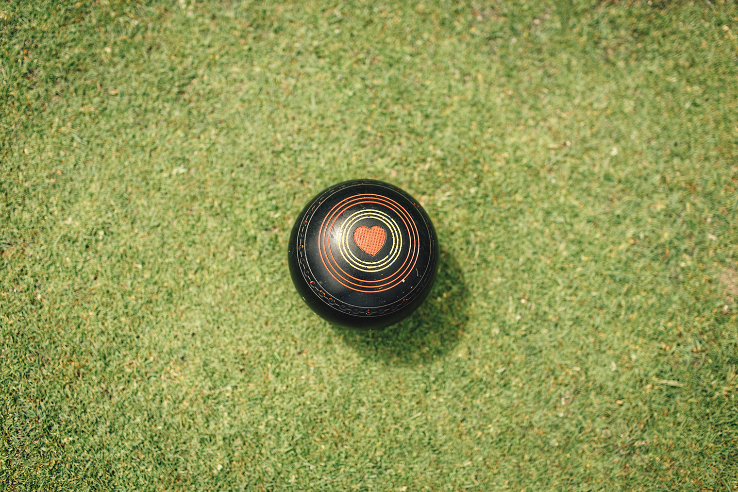 victoria BC lawn bowling inspired wedding photos