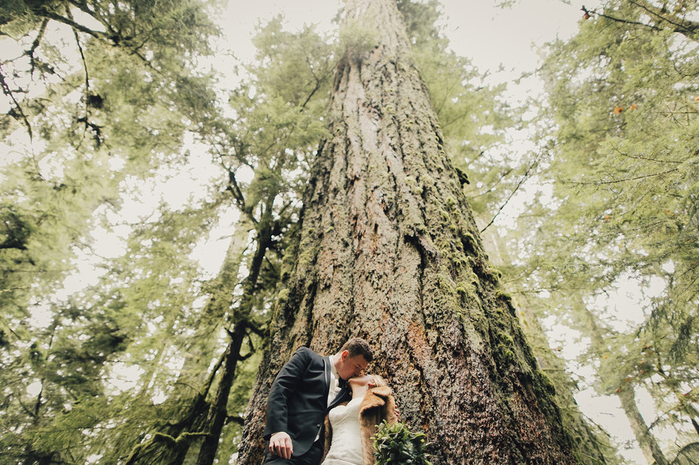 cathedral-grove-wedding-photos-parksville-0010.jpg