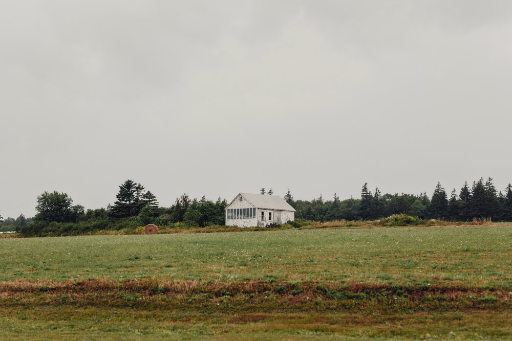 prince-edward-island-cottage-wedding-photos-0038.JPG