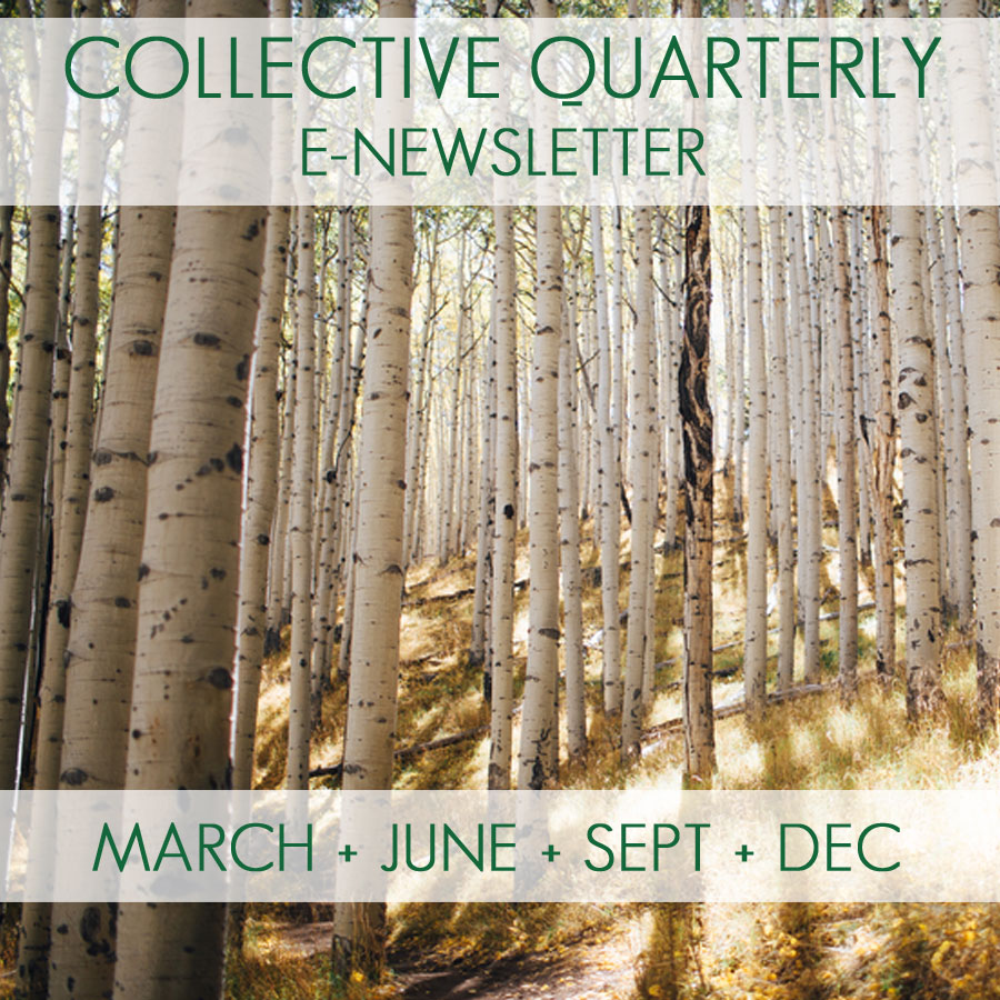 BLOG WRITING & COLLECTIVE QUARTERLY - Contribute to the Collective Quarterly e-newsletter. Published March, June, September, December.  - Went to a TSC event? Write about it and submit it for publication on our blog!
