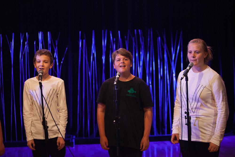 Voices Co - Show (22).jpg