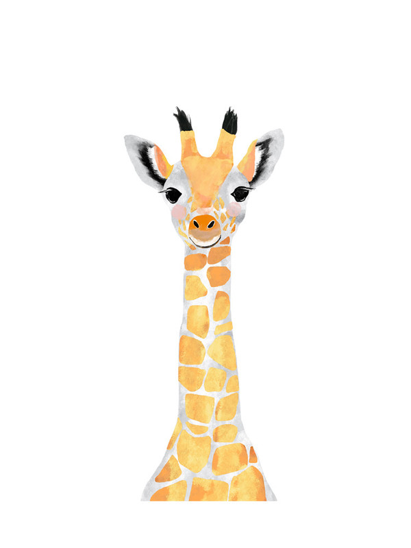 $20+ Baby Animal. Giraffe Print, Cass Loh