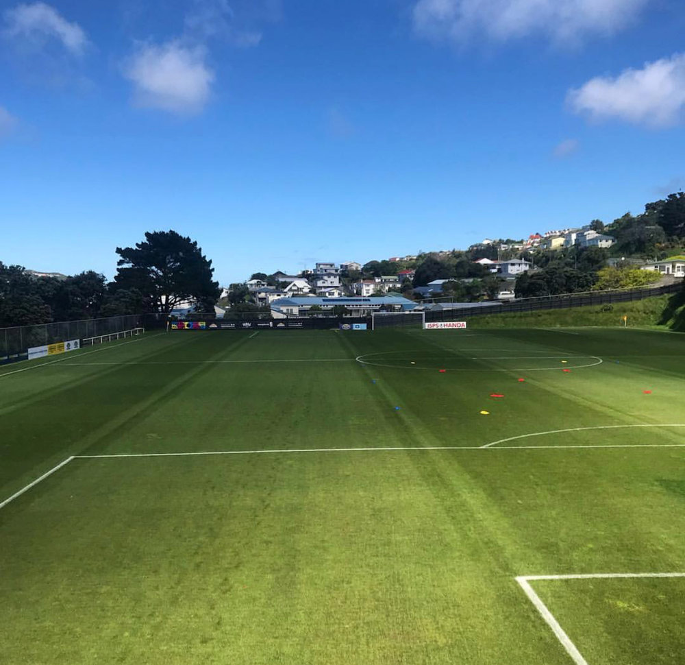View of David Farrington Park from the clubroom on a beautiful sunny day. Photo courtesy of CM.