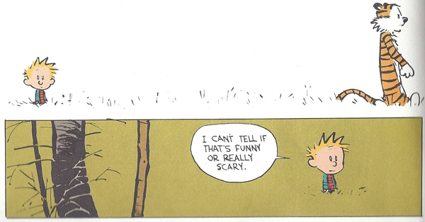 10-Calvin-and-Hobbes-3.jpg