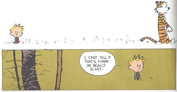 10-Calvin-and-Hobbes-3.jpg