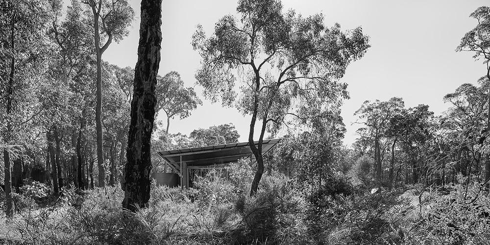 bushhouse3427_web.jpg