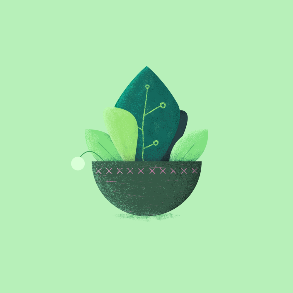 Potted_171018.png