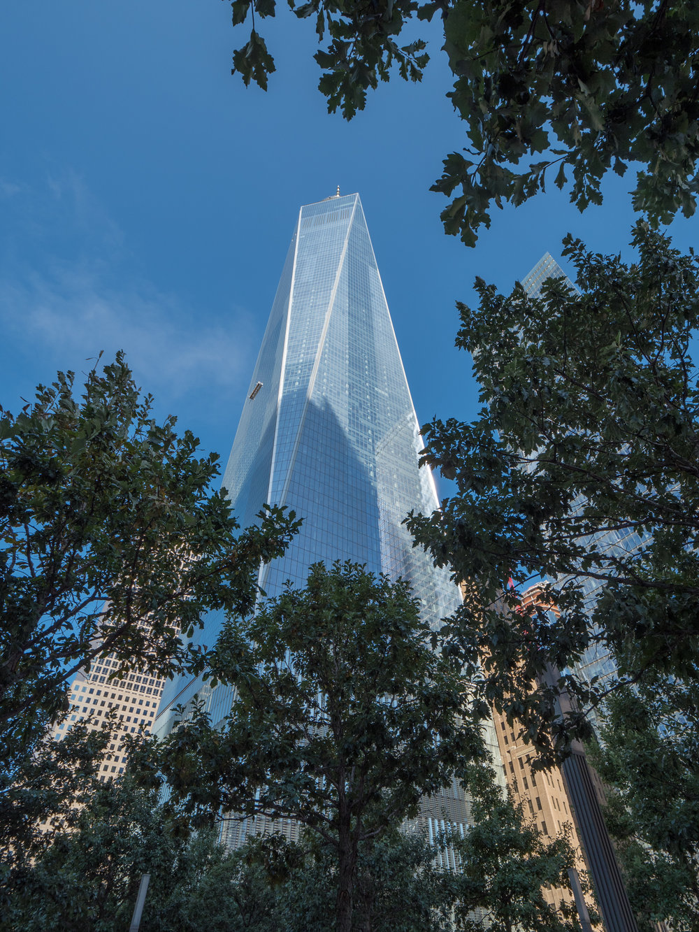 One World Trade.jpg
