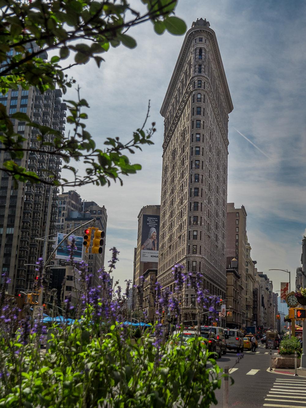 New York-22.jpg