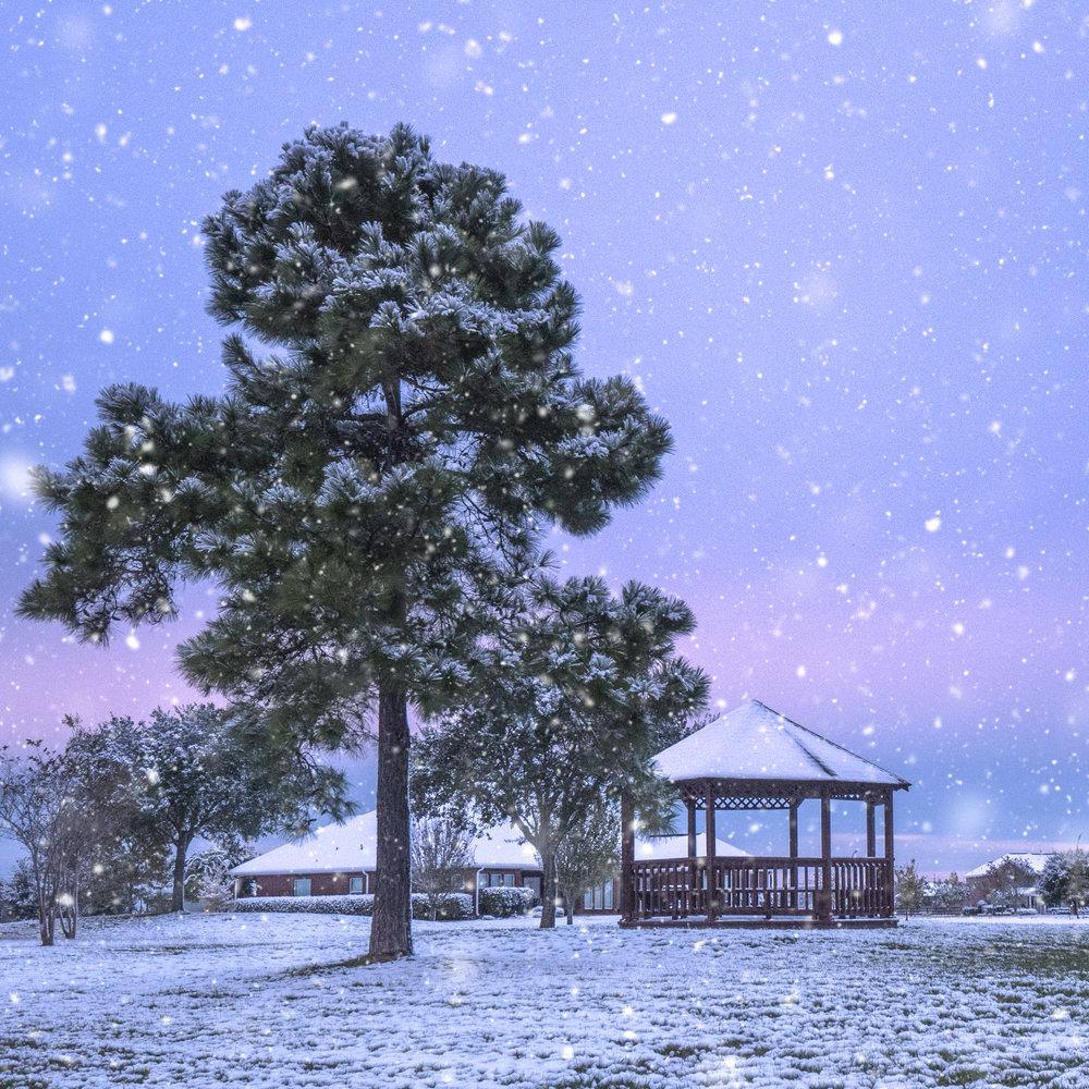 Snow Day-4.jpg
