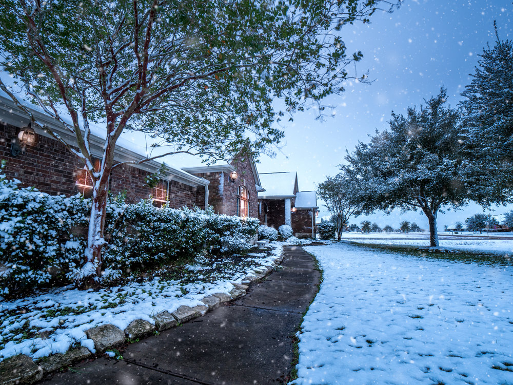 Snow Day-3.jpg