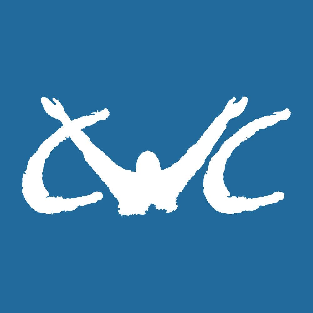 CWC Basic Blue.jpg