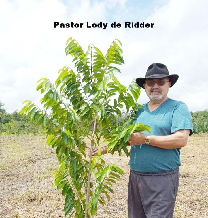 Lody w_Guyabano plant.jpg