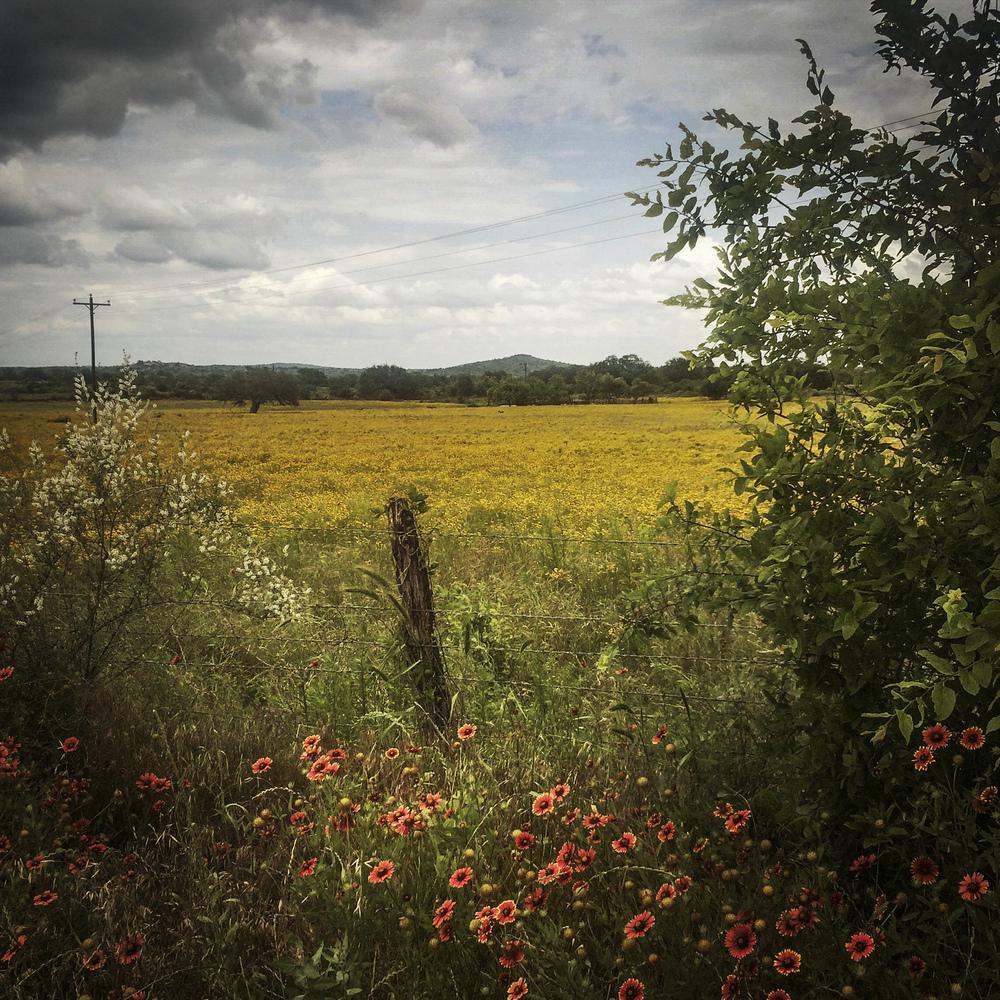 Llana, Texas, 2015