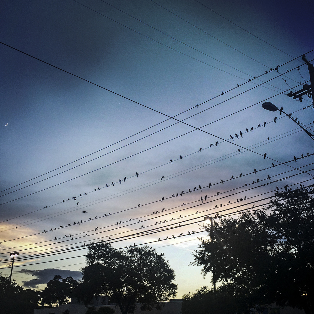 Austin, Texas, 2015