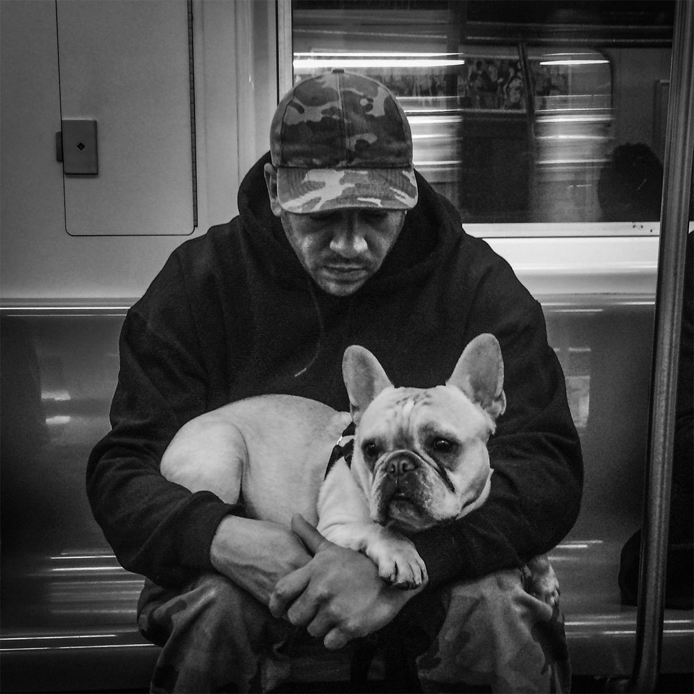 New York Subway, 2016