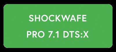 NAKAMICHI SHOCKWAFE PRO 7.1