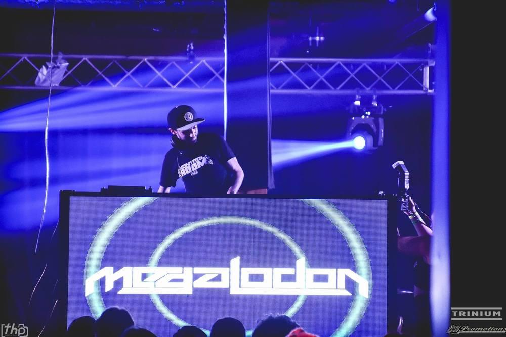 Megalodon Website Photo.jpg