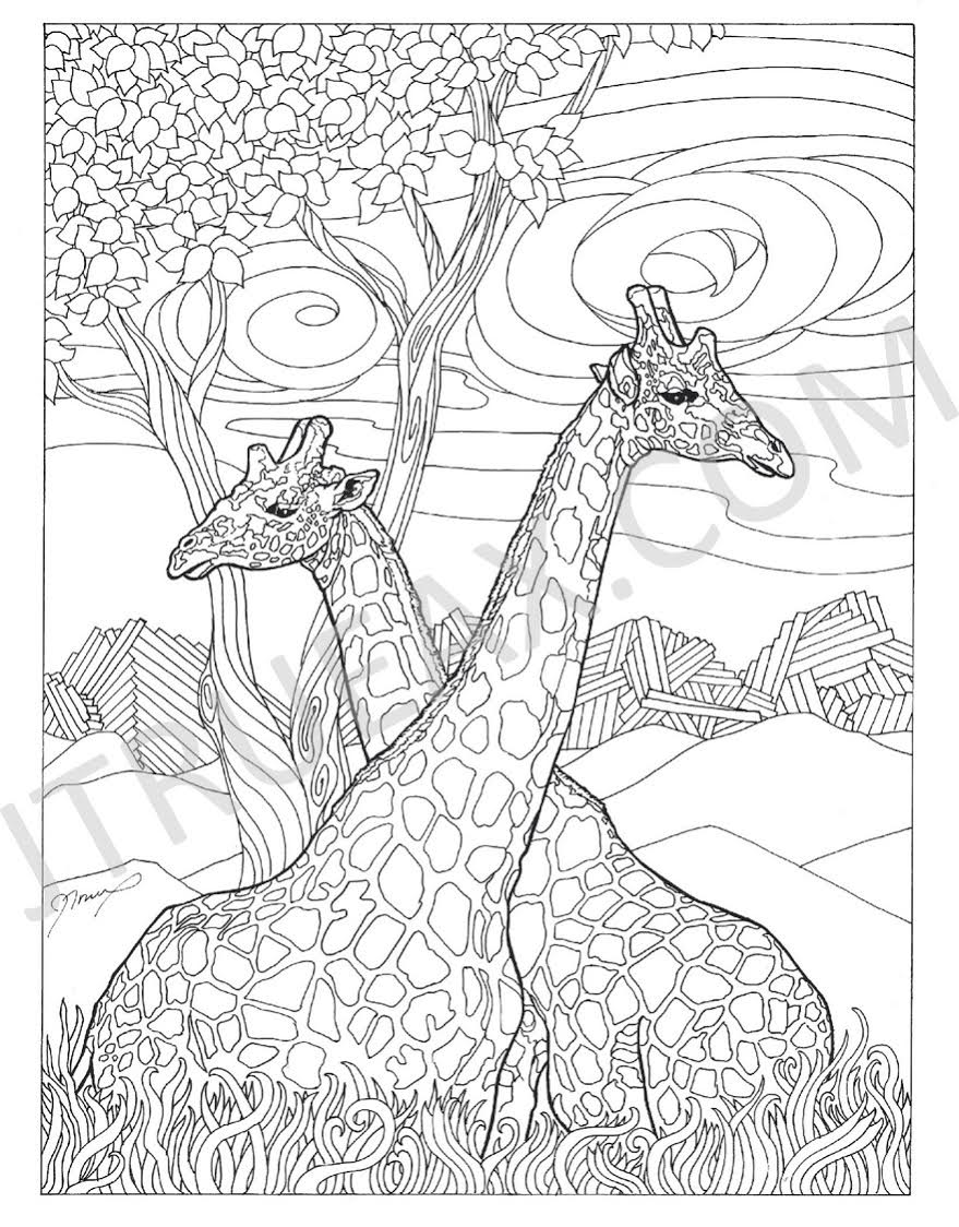 Giraffes-Coloring Page