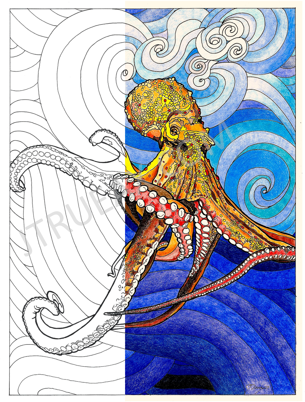 Octopus (Coloring Page)
