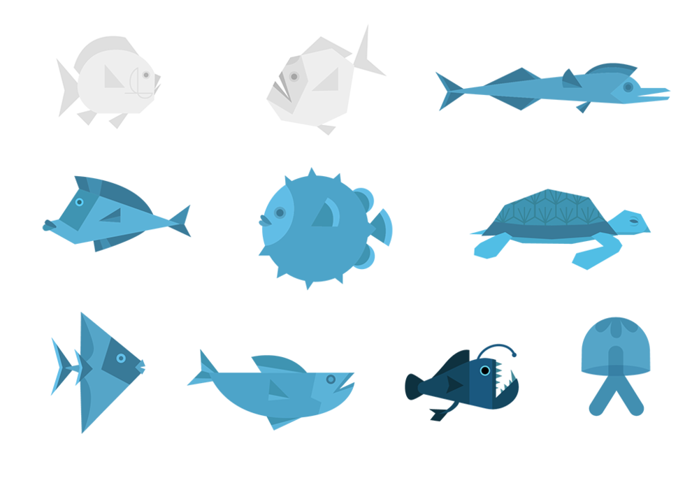 fish_wbr-01-01 copy.png