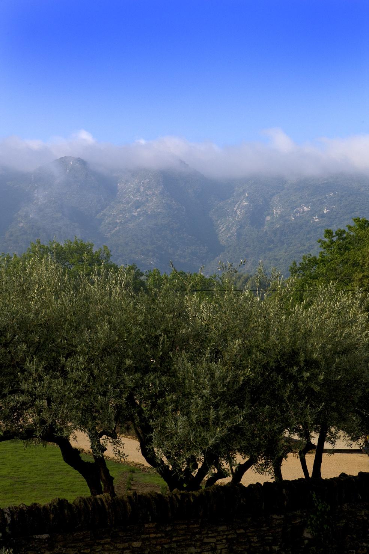 vue sud-2.jpg