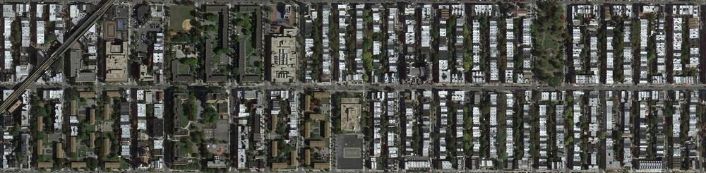 Web map.jpg