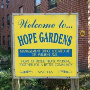 HOPE GARDENS /HOPE GARDENS