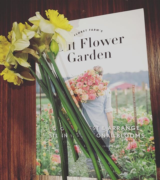 Cuddled up with some fresh daffodils and the brand new Floret book! #pisgahflowers #floret #floretseeds #flowerfarm