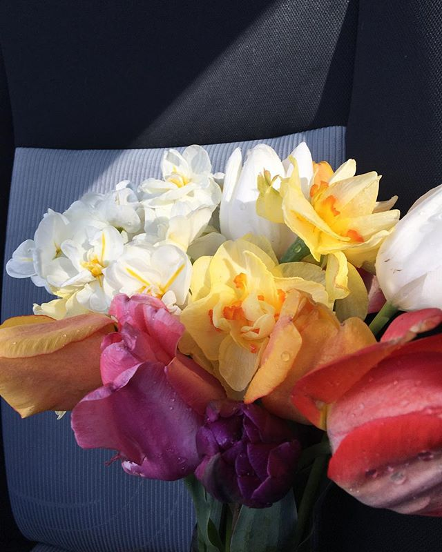 Driving home with a little love in my passenger seat this morning #pisgahflowers