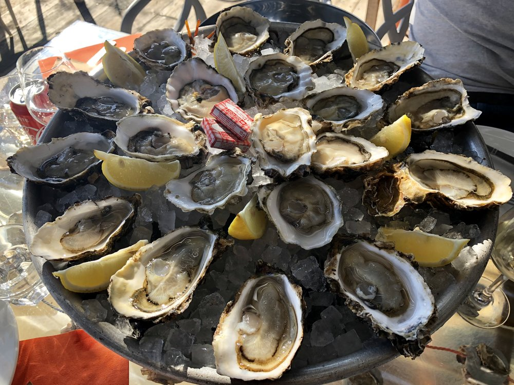 Tarboureich Oysters (Languedoc top branded appellation for oysters) - Pairing recommendation with Paul Mas's Marselan and Cremant de Limoux (Image: Sumita Sarma)