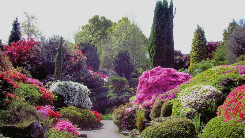 Leonardslee House & Gardens, West Sussex -