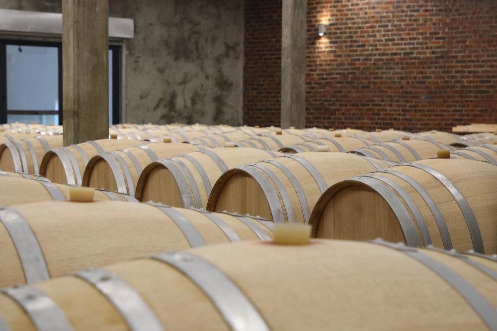 the-coolest-wine-destitation_17.jpg