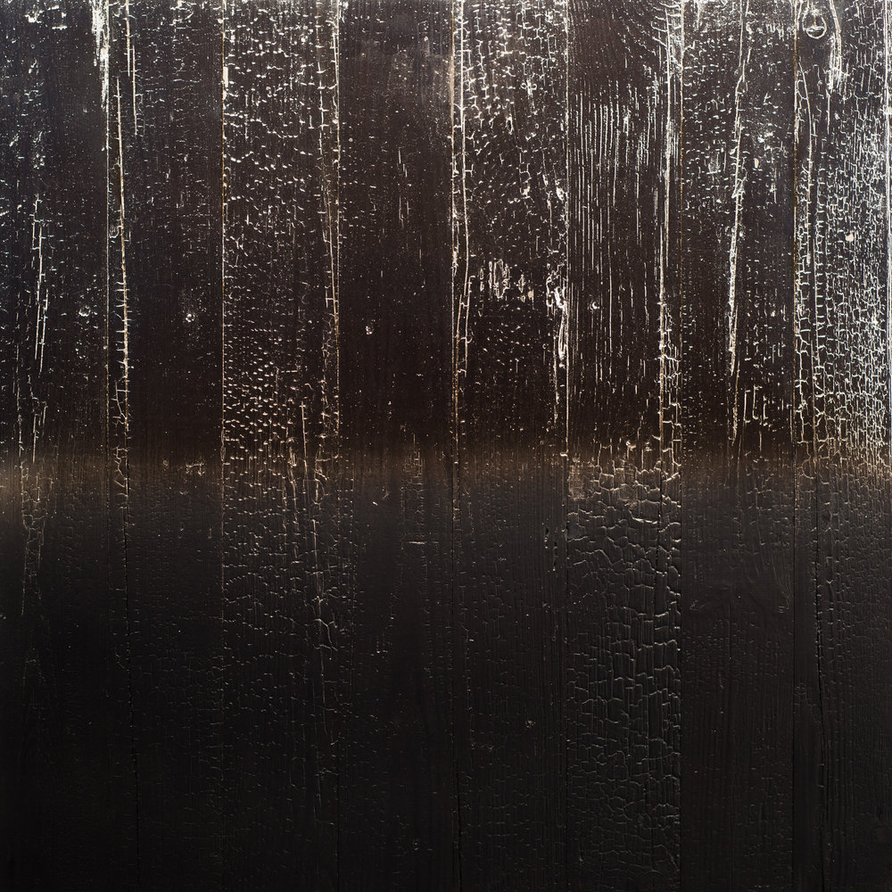 ALCHEMY SHOU SUGI BAN 48 X 48 INCHES SILVER NITRATE ON CHARRED WOOD.jpg