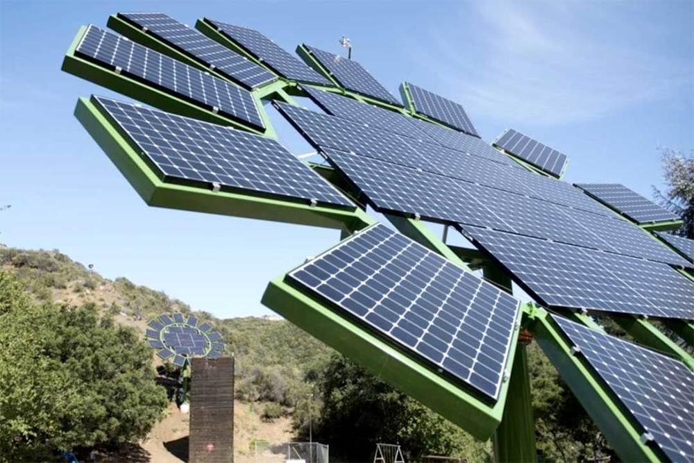 Os painéis solares têm convivido com as plantações em fazendas norte-americanas.