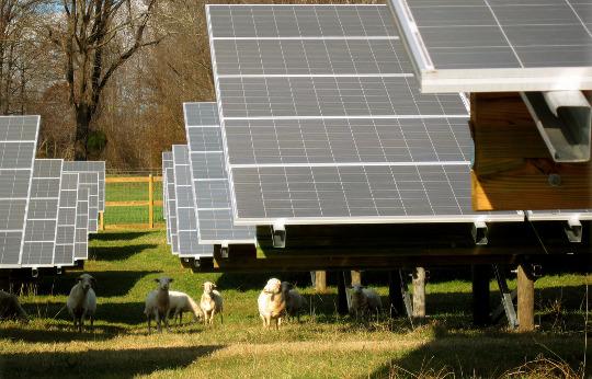 energia solar + eua + cosol