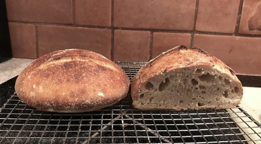 """""""Bread Baker's Apprentice"""" attempts"""