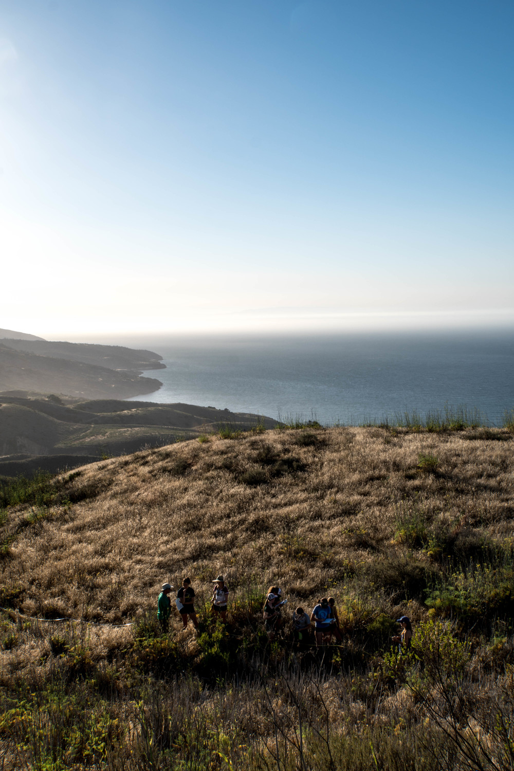 Field biology with a view. Above Prisoners Harbor, Santa Cruz Island, CA.