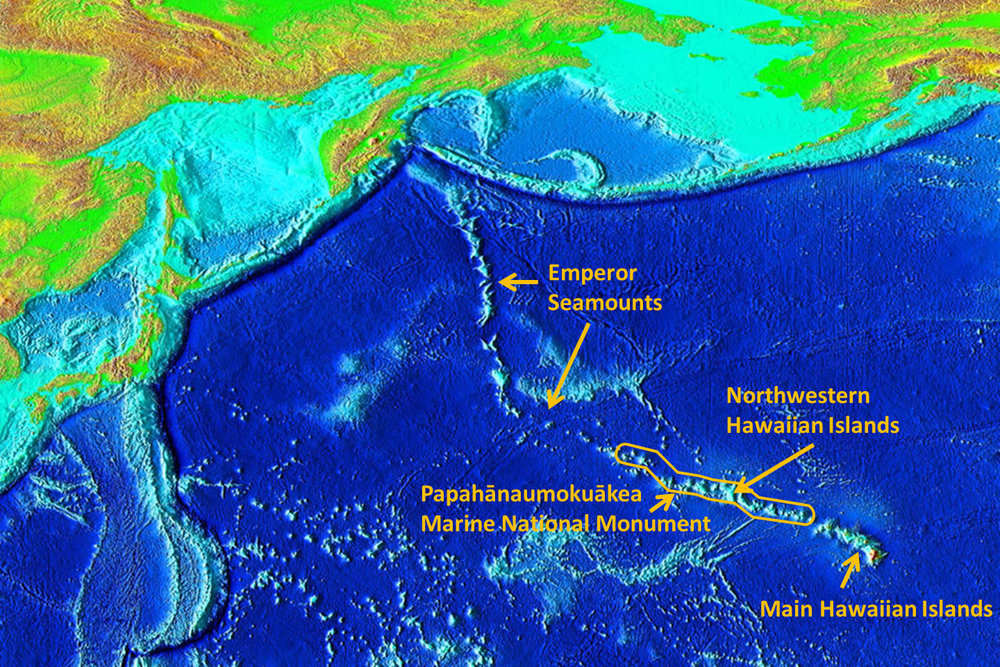The geologic time lapse of Hawaii. Source: www.bishopmuseum.org Image: NOAA/Richard L. Pyle