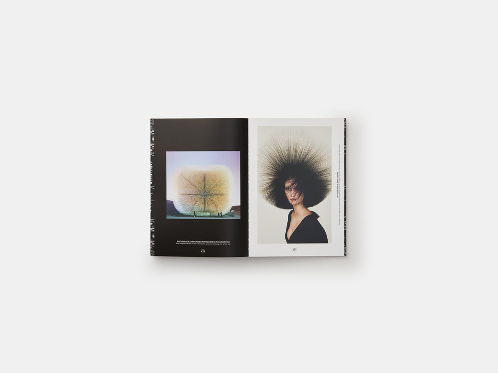 sagmeister-walsh-beauty-EN-7727-3D-pp-218-219.jpg