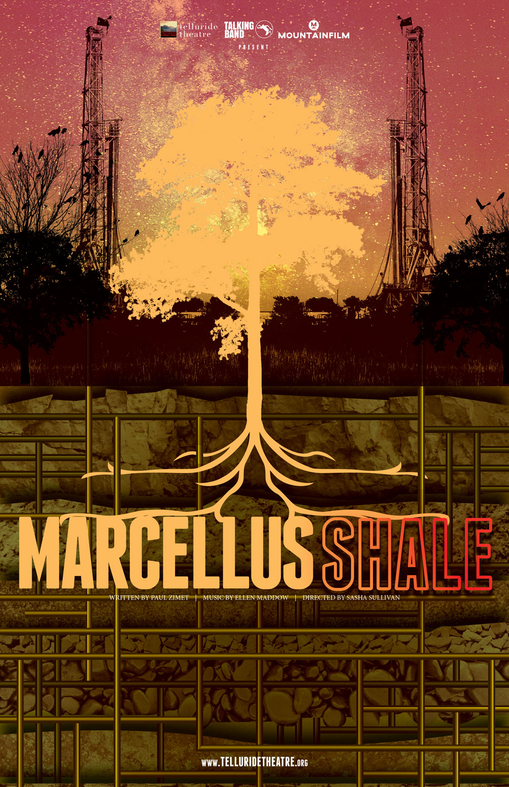 Marcellus Shale Project