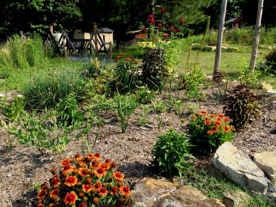 Hub-Farm-Garden.jpg