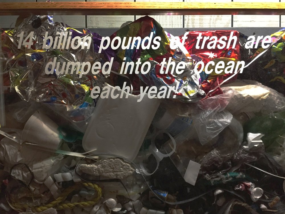 Trash in Ocean.jpg