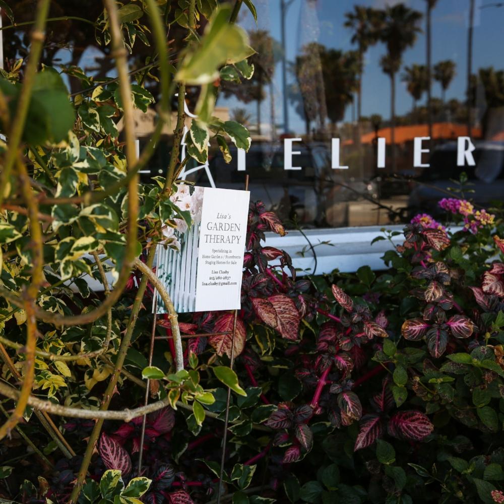 L'Atelier Storefront Garden - Redondo Beach